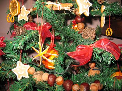 ornamente-brad-1